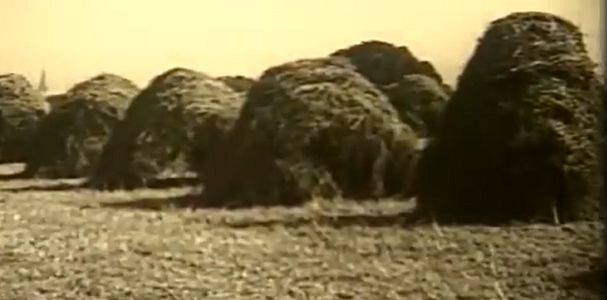 Video: Stacking hay and grains